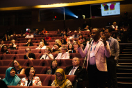 Questions in Plenary theatre