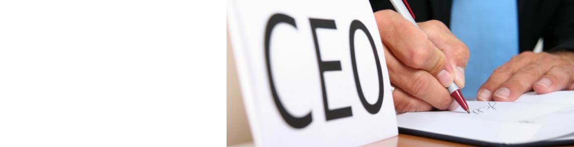 CEO Programme.jpg